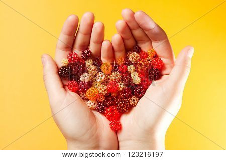 Hands with a lot of hand-woven spheres in the shape of heart, every ball made of tiny glass seed beads, on yellow background