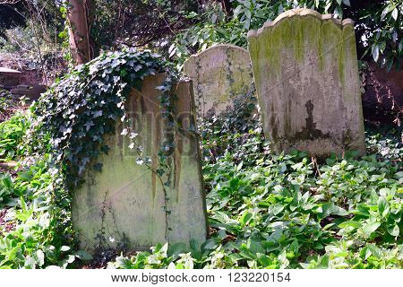 Small group of gravestones in English Graveyard