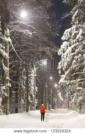 Young woman and dalmatian dog in winter forest. Trees and road covered in snow street lights along road.