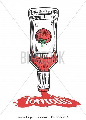 Ketchup flows from bottle. Vector vintage engraved illustration.