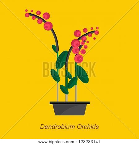 Illustration of houseplant, indoor and office plant in pot. Vector plant dendrobium orchids in pot. Flat dendrobium orchids, vector icon of dendrobium orchids. Office plant in pot.