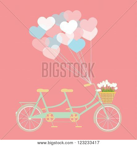 Tandem bycicle with balloons and basket of tulip flowers