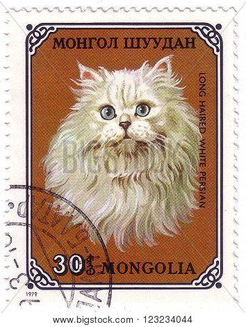 MONGOLIA - CIRCA 1979: stamp printed by Mongolia, shows cat, White Persian, circa 1979.