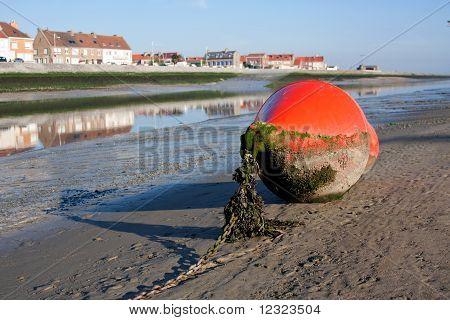 Bouy Lying On The Coast
