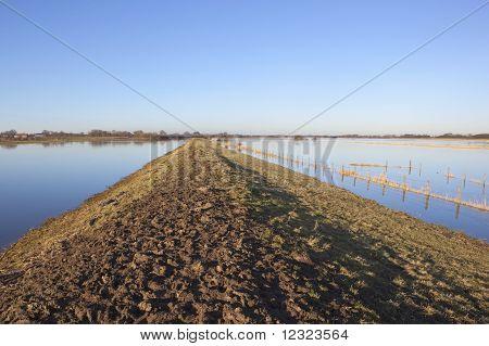 Muddy Flood Banks