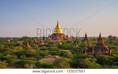 Dhammayazika Pagoda at sunset Bagan (Pagan) Myanmar