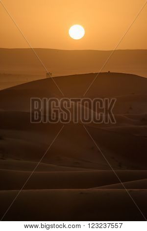 Sand dunes at sunset Sahara Desert Hassilabied Morocco. ** Note: Soft Focus at 100%, best at smaller sizes