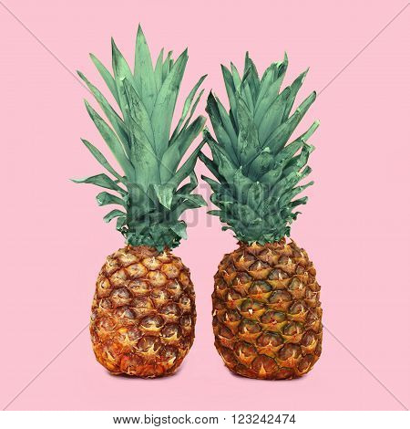 Two Pineapple On Colorful Pink Background, Ananas Photo