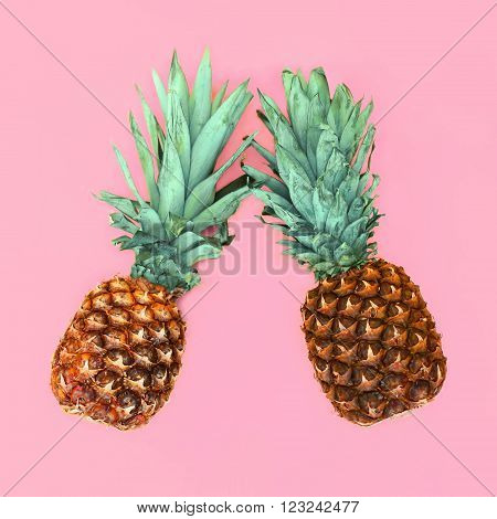 Two Pineapple On Pink Background, Ananas Photo