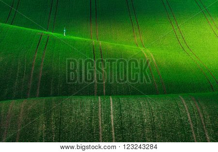 Czech Republic. South Moravia. Moravian green fields.