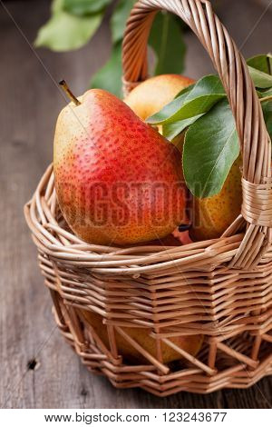 fresh pears with green leaves basket of pears on a wooden background