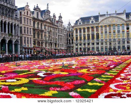 a flower carpet in Brussels