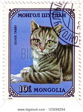 Mongolia - Circa 1979: A Stamp Printed In The Mongolia, Shows The Silver Tabby Cat, Circa 1979