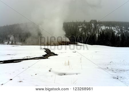 Old Faithful Geothermal geyser in winter Yellowstone National Park
