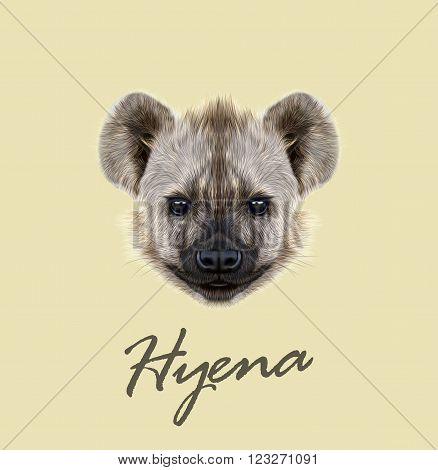 The cute face of African Hyena on yellow background.