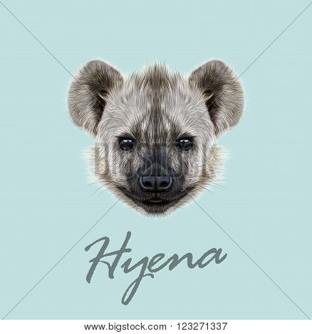 The cute face of African Hyena on blue background.