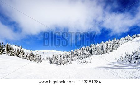 Wide snowfields and deep snow pack in the high alpine ski area at Sun Peaks in the Shuswap Highlands of central British Columbia, Canada