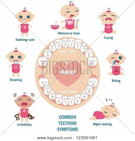 Teething signs and symptoms. Set of babies illustrating the symptoms of teething.  Baby teething infographic.