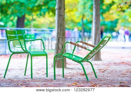 Traditional green chairs in the Tuileries garden in Paris