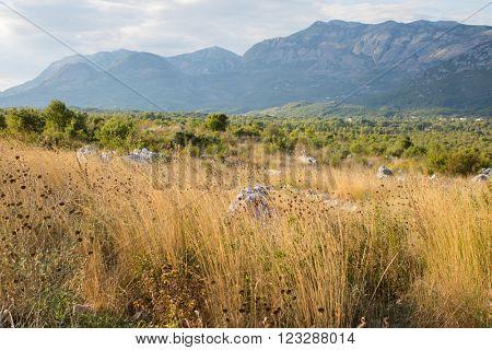 lanscape Montenegro