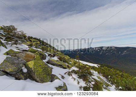Green gorgan and mountains on the horizon. Carpathians