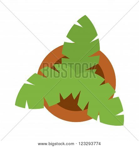Home plant decoration in flower pot top view and green leaf house plant garden decorative icon. Bush home green plant in pot culture top view vector icon. Green plant leaves top view