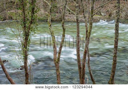 Paiva River