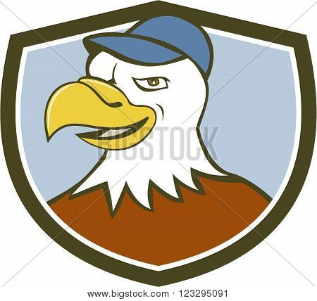 Illustration of an american bald eagle head wearing hat smiling looking to the side set inside shield crest on isolated background done in cartoon style.