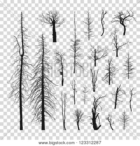 Set of dead trees without leaves. Vector illustration. Set of dead trees. Dry trees. Set of dead black trees.