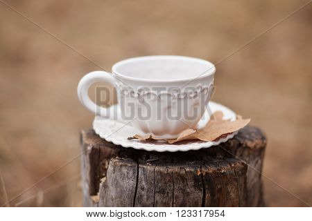 White vintage cup with dry oak leave on stump on beige background outdoors ** Note: Soft Focus at 100%, best at smaller sizes
