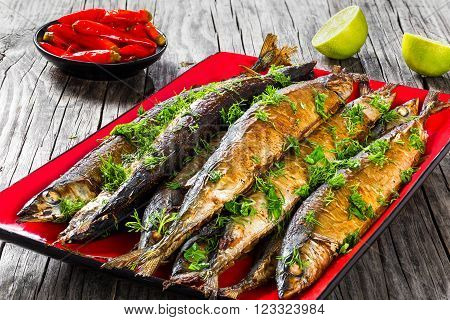 Baked saury on a red rectangular dish close-up top view