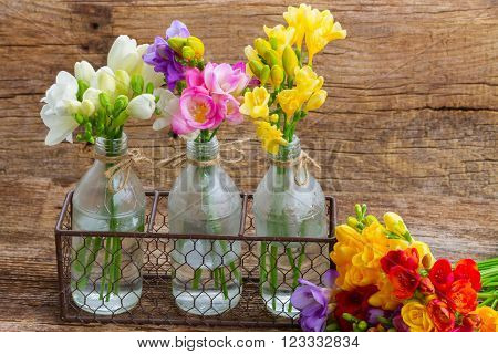 Colorful freesia flowers in glass  vases  on wooden table  background