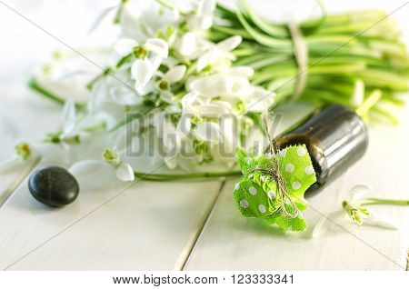 Fragrant Oil Extracts Snowdrop