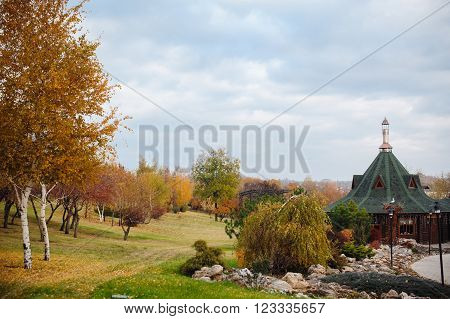 Autumn Scenery of Park Alley with Bushes and Trees on Green Grass.