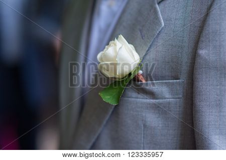Boutonniere groom on jacket made of white rose.