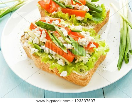 Sandwiches with greens, carrot and cottage cheese. Shallow dof.
