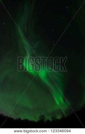 Outlines of a dancer's arm up raised form of a wave of green aurora in the Alaskan night sky.