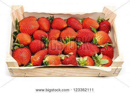 Delicious strawberries in a wooden box on a white studio background