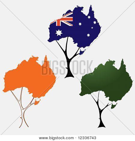 Australia Flag Map in a tree