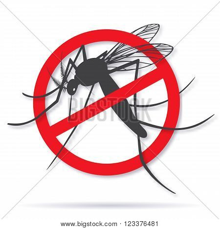 Zika alert banner poster flyer with aegypti aedes mosquito silhouette. Forbidden no mosquito sign. High quality graphic design elements isolated on white background with shadow. Healthcare concept