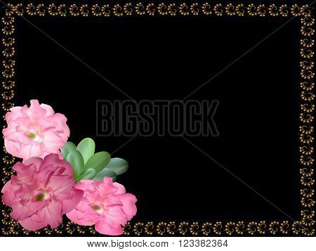 illustration with pink azalea flowers in frame isolated on black background