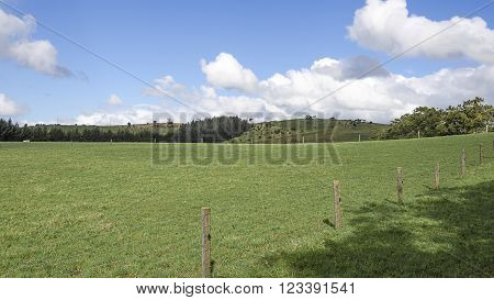 Fenced in Paddock against a blue sky with woolly clouds in a blue sky
