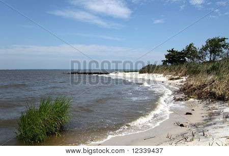 Beach Along Delaware Bay