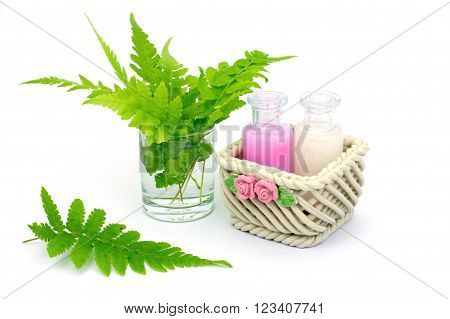 Shampoo and Shower gel put in ceramic basket on white background. Shampoo Shower gel bottles with green leaves in a glass of water.