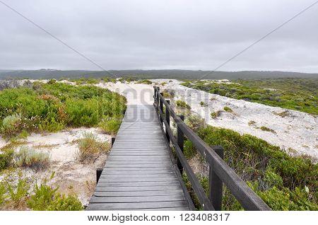 Hamelin Bay's coastal landscape in Western Australia with limestone rock, vegetated dunes and wooden boardwalk under dark stormy skies.