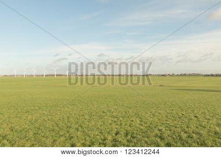 Pasture at Skarl in Friesland, The Netherlands.