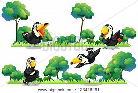 Toucans flying in the garden illustration