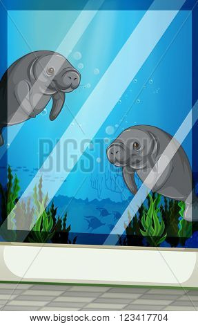 Seacows swimming under the sea illustration