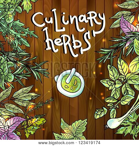 Beautiful hand drawn vector background of culinary herbs