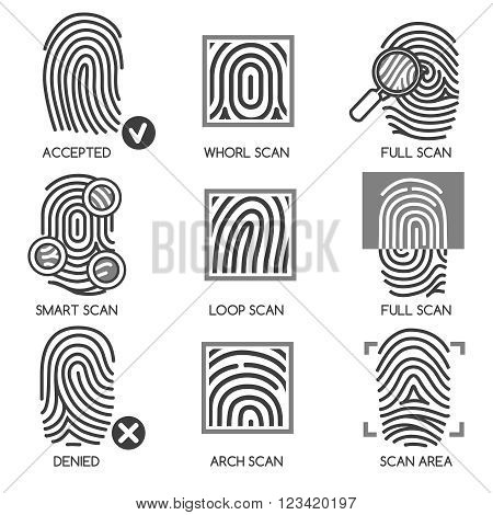 Fingerprint pass icons or thumbprint identification icons. Vector illustration